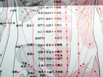 fukubuyokonarabi1.jpg
