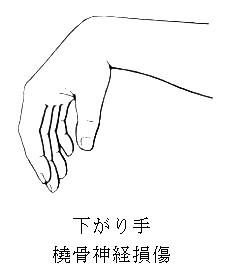kasuishu1.jpg