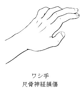 washide1.jpg